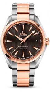 Omega Seamaster 231.20.42.21.06.003
